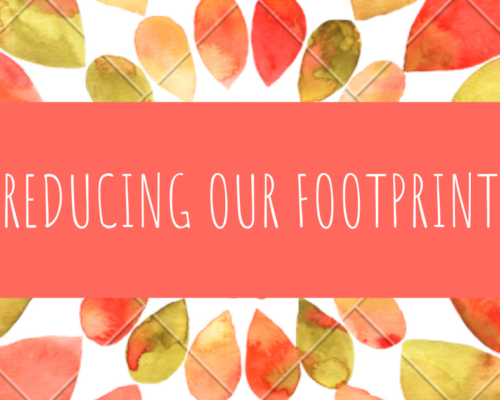 REDUCING OUR FOOTPRINT